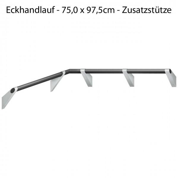 Haltegriff Eckdusche - verstärkt für Duschklappsitz - A100